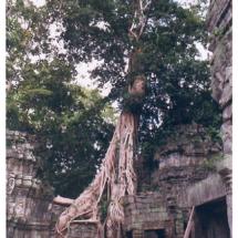 03_Cambodia